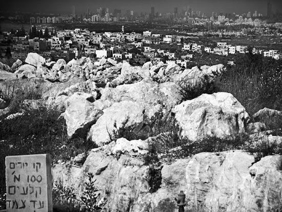 מבט לגורדי השחקים של תל אביב מאזור פדואל במערב השומרון / צלם: אדוארד קפרוב